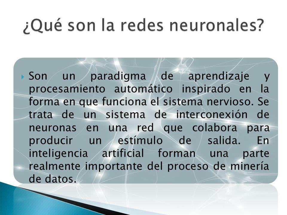 ¿Qué son la redes neuronales