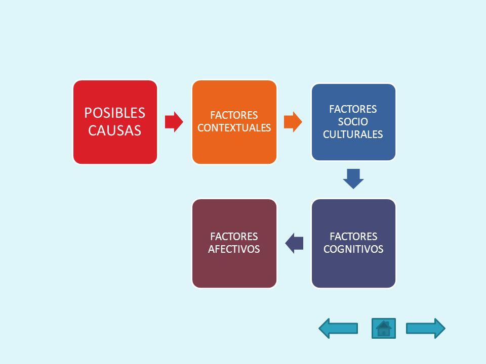 POSIBLES CAUSAS FACTORES CONTEXTUALES FACTORES SOCIO CULTURALES