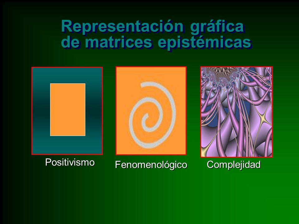 Representación gráfica de matrices epistémicas
