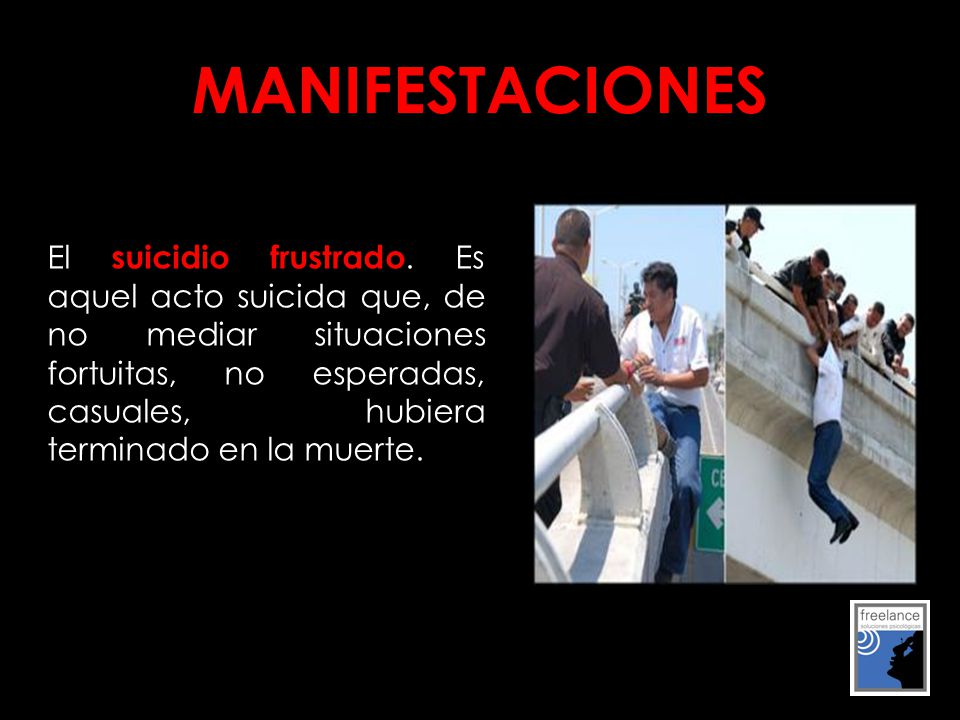 MANIFESTACIONES