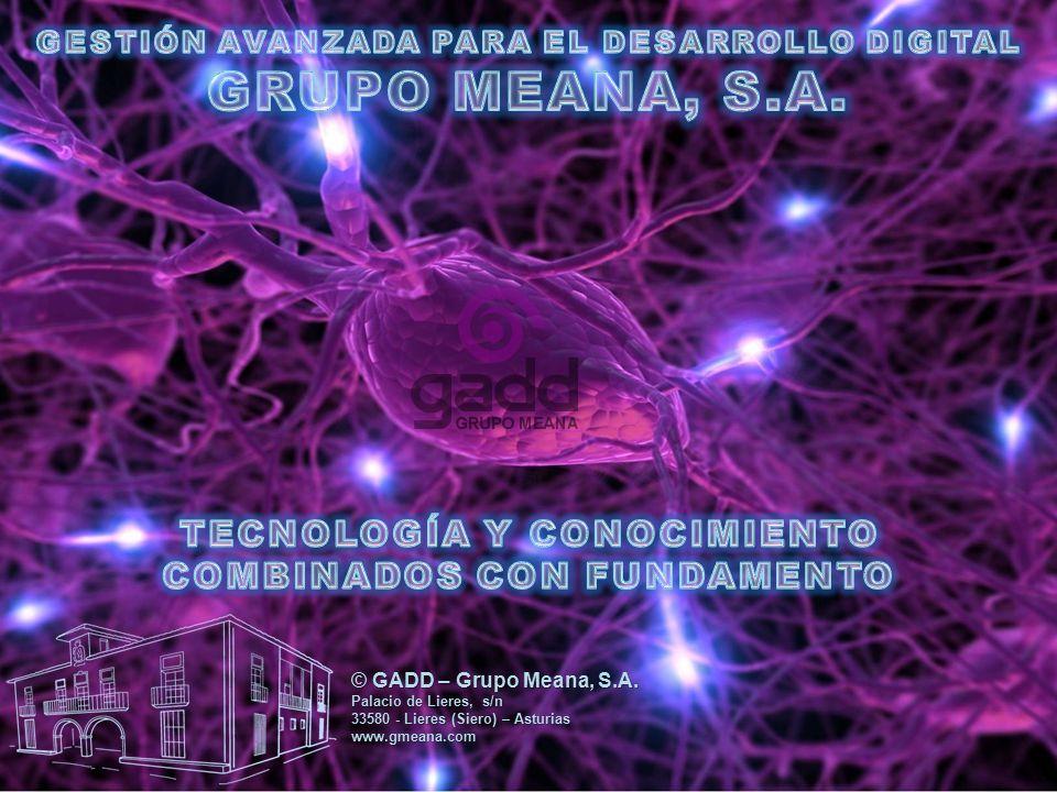 GRUPO MEANA, S.A. TECNOLOGÍA Y CONOCIMIENTO COMBINADOS CON FUNDAMENTO