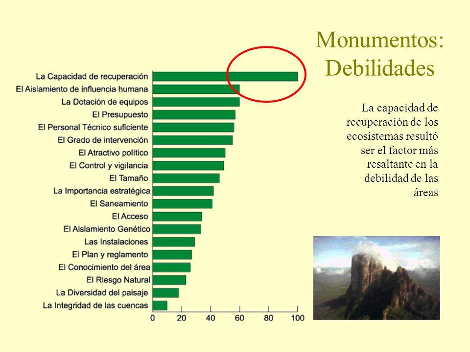 Monumentos: Debilidades