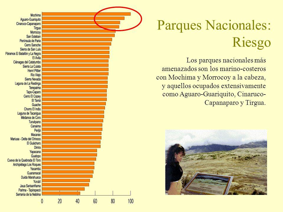 Parques Nacionales: Riesgo