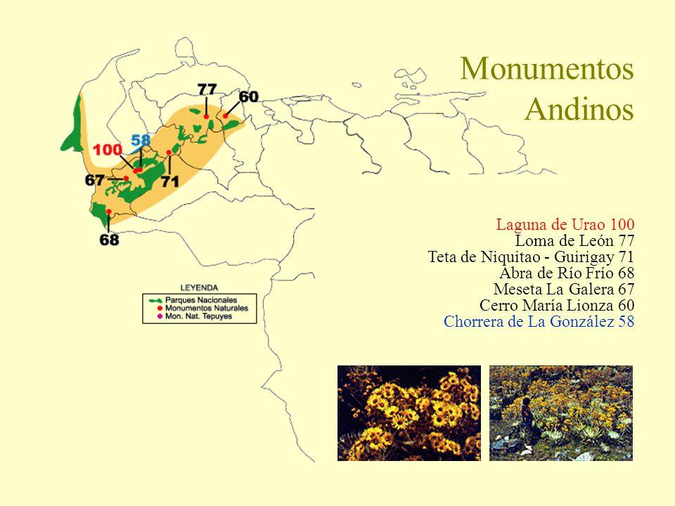 Monumentos Andinos Laguna de Urao 100 Loma de León 77