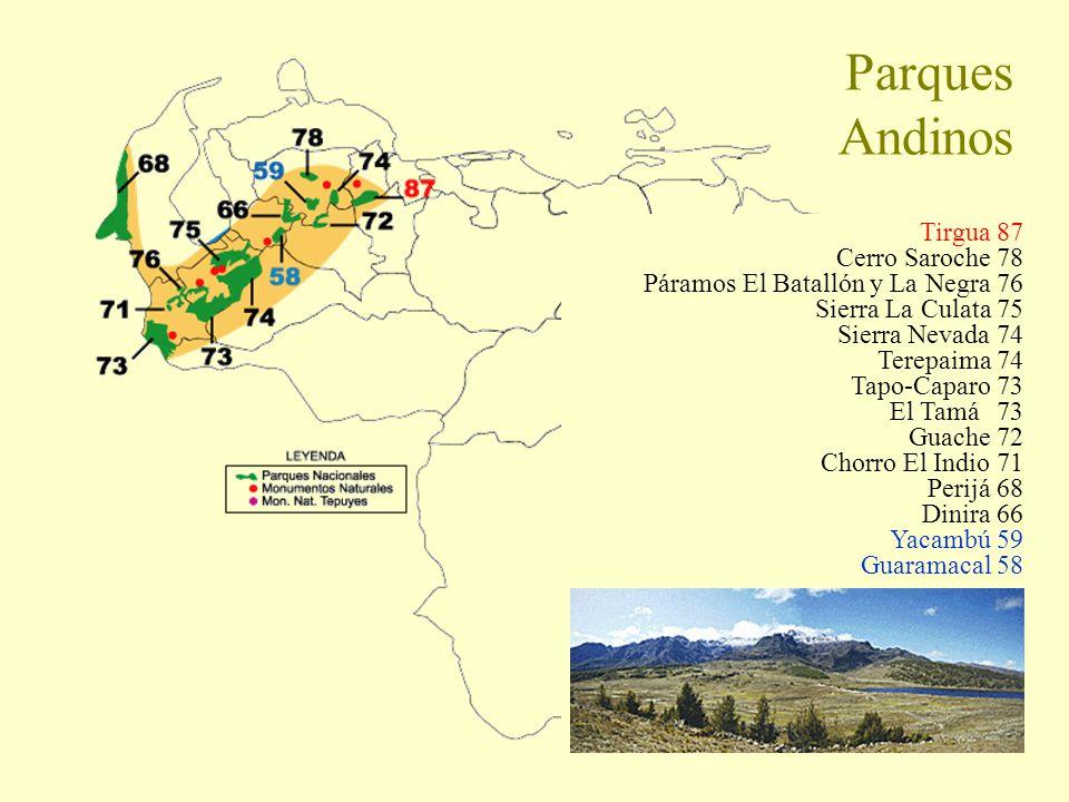 Parques Andinos Tirgua 87 Cerro Saroche 78