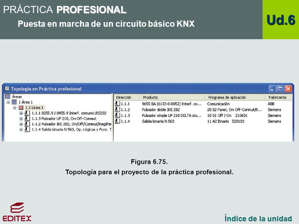 Topología para el proyecto de la práctica profesional.