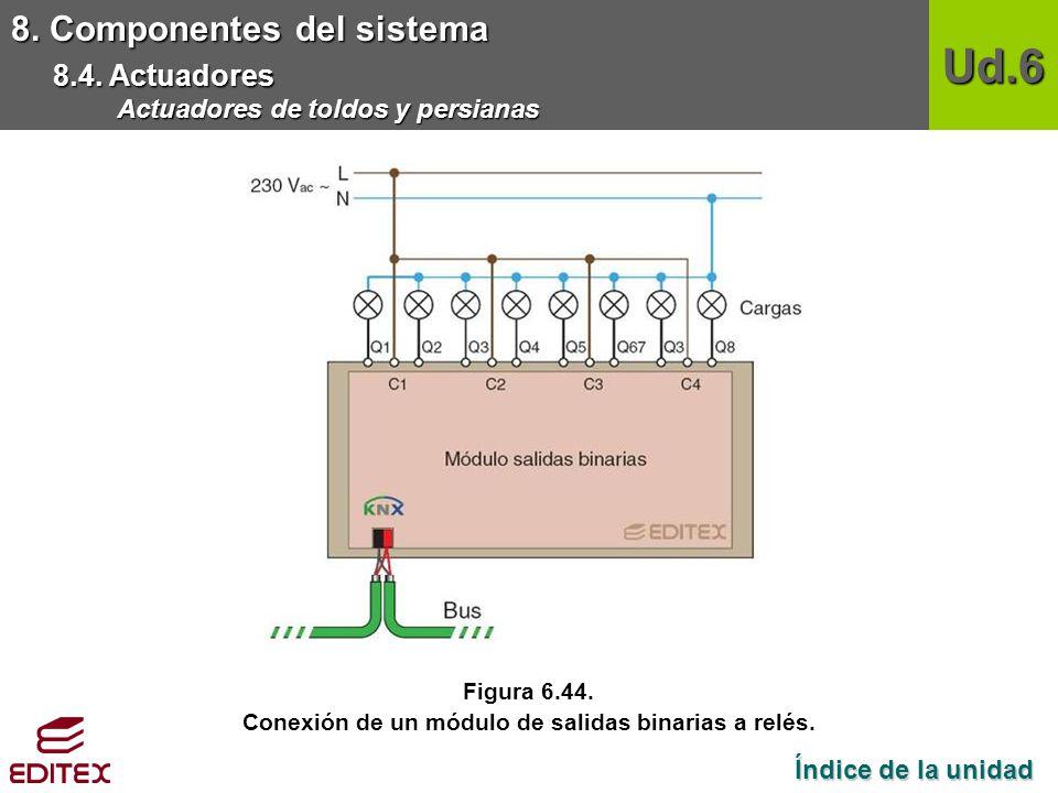 Conexión de un módulo de salidas binarias a relés.