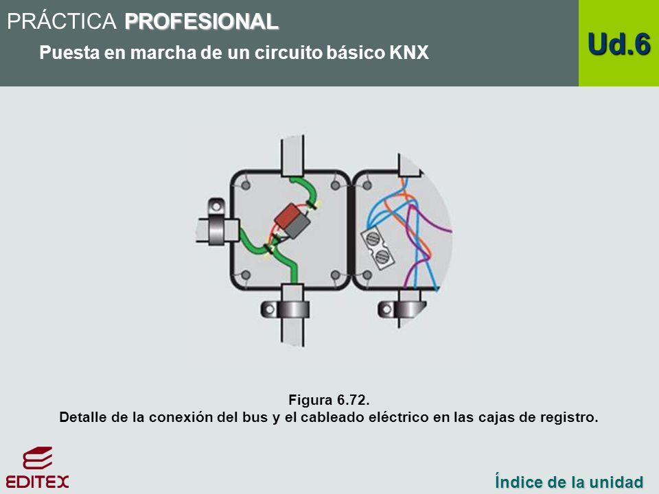 Ud.6 PRÁCTICA PROFESIONAL Puesta en marcha de un circuito básico KNX