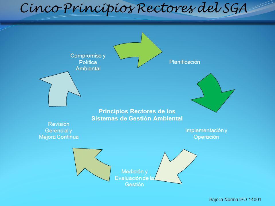 Cinco Principios Rectores del SGA