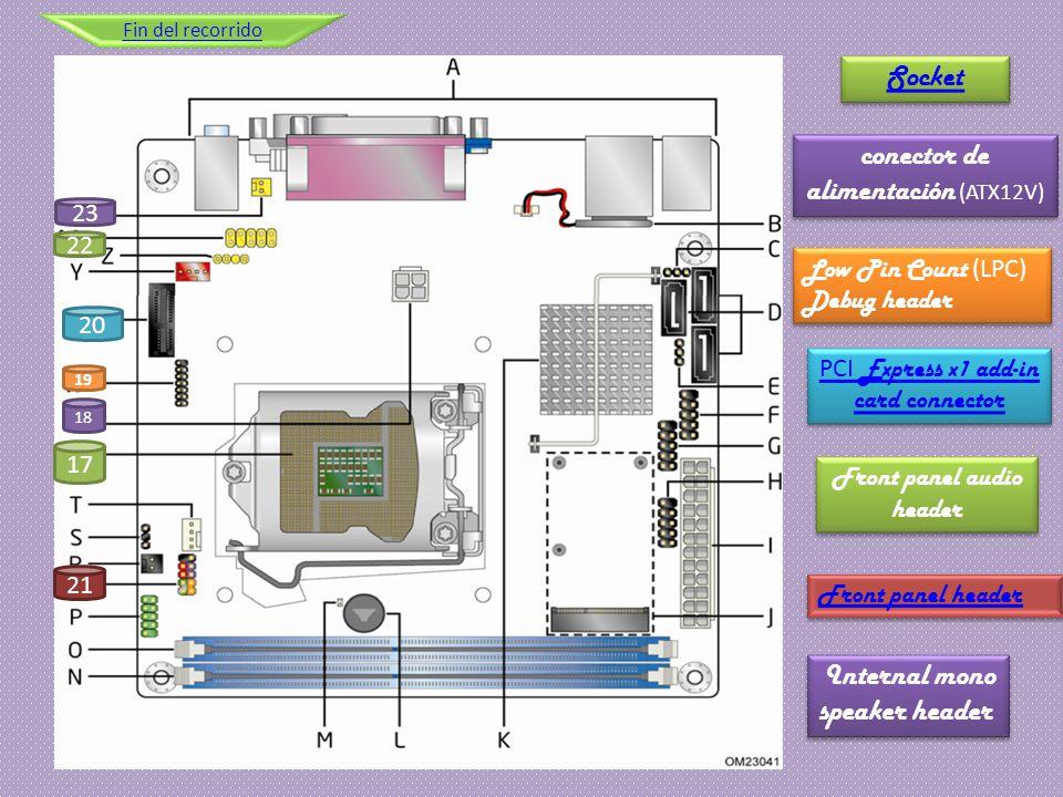 conector de alimentación (ATX12V)