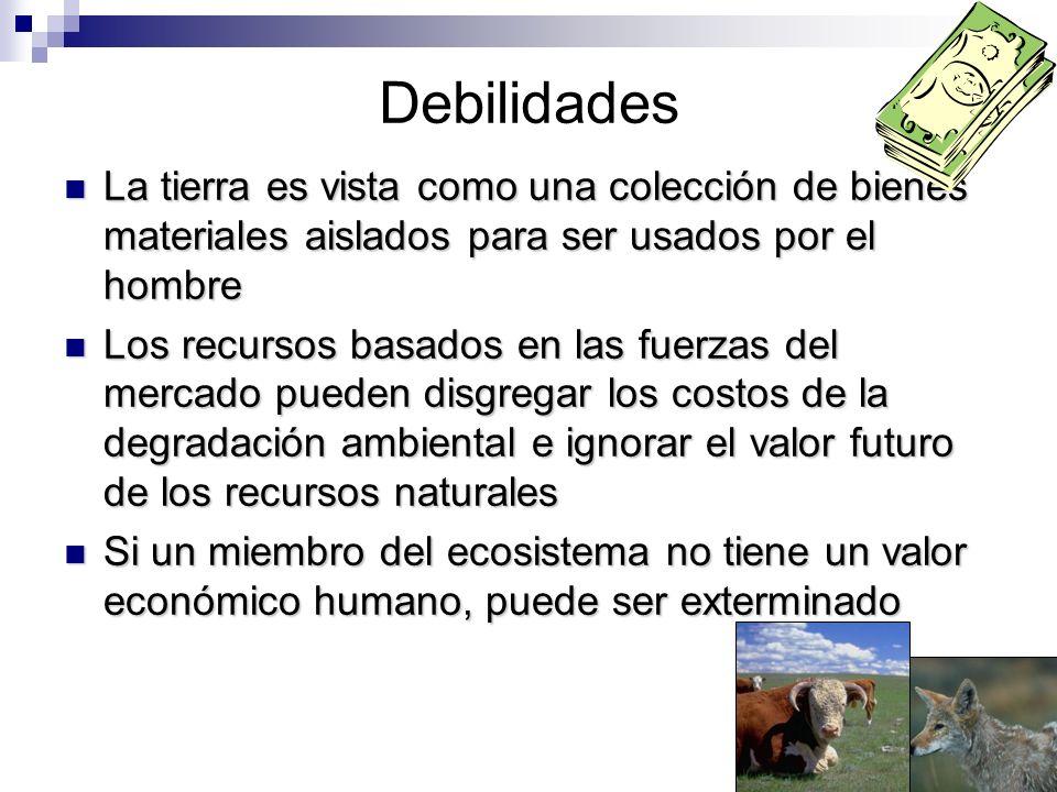 DebilidadesLa tierra es vista como una colección de bienes materiales aislados para ser usados por el hombre.
