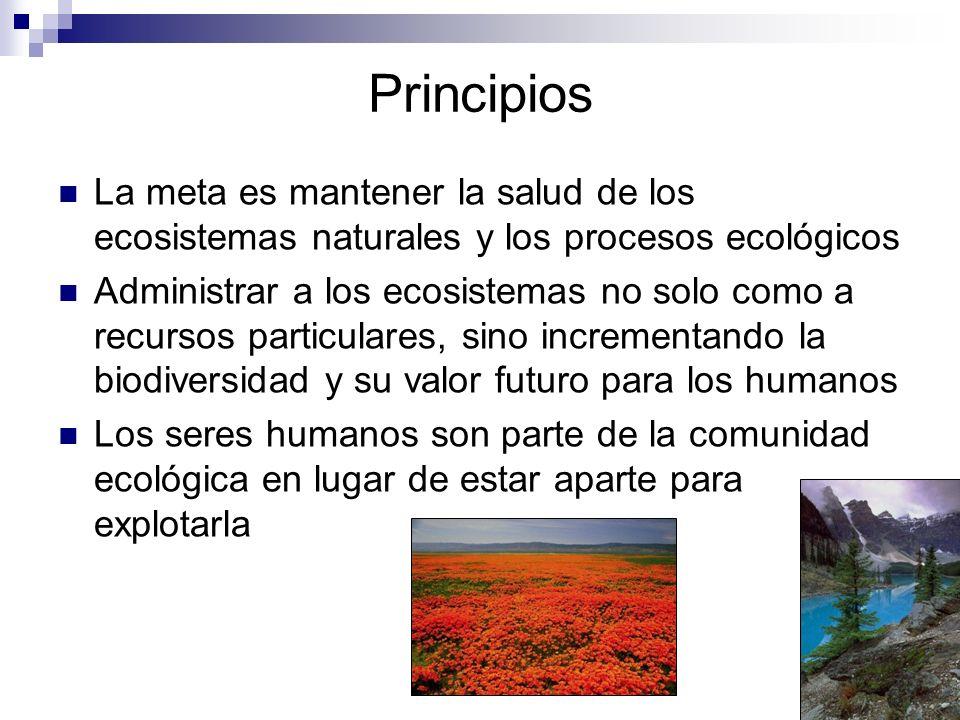 PrincipiosLa meta es mantener la salud de los ecosistemas naturales y los procesos ecológicos.