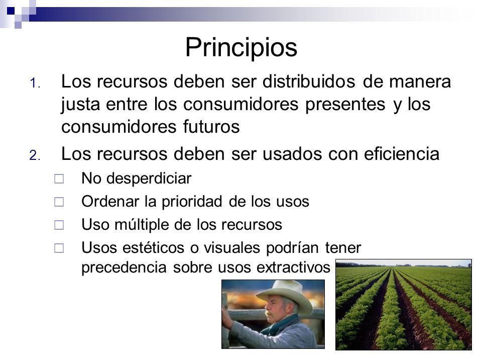 Principios Los recursos deben ser distribuidos de manera justa entre los consumidores presentes y los consumidores futuros.