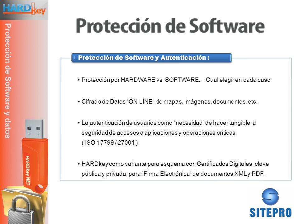 Protección por HARDWARE vs SOFTWARE. Cual elegir en cada caso