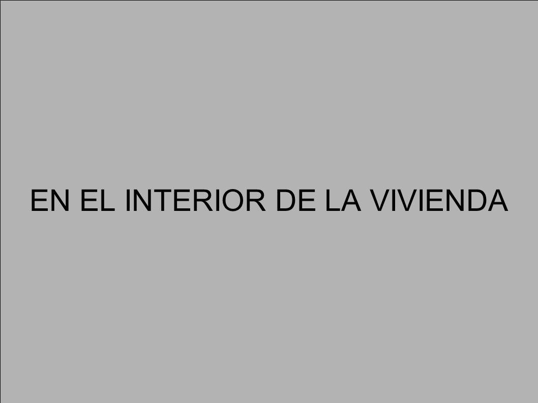 EN EL INTERIOR DE LA VIVIENDA