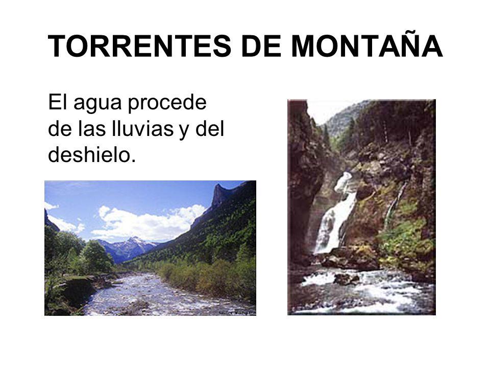 TORRENTES DE MONTAÑA El agua procede de las lluvias y del deshielo.