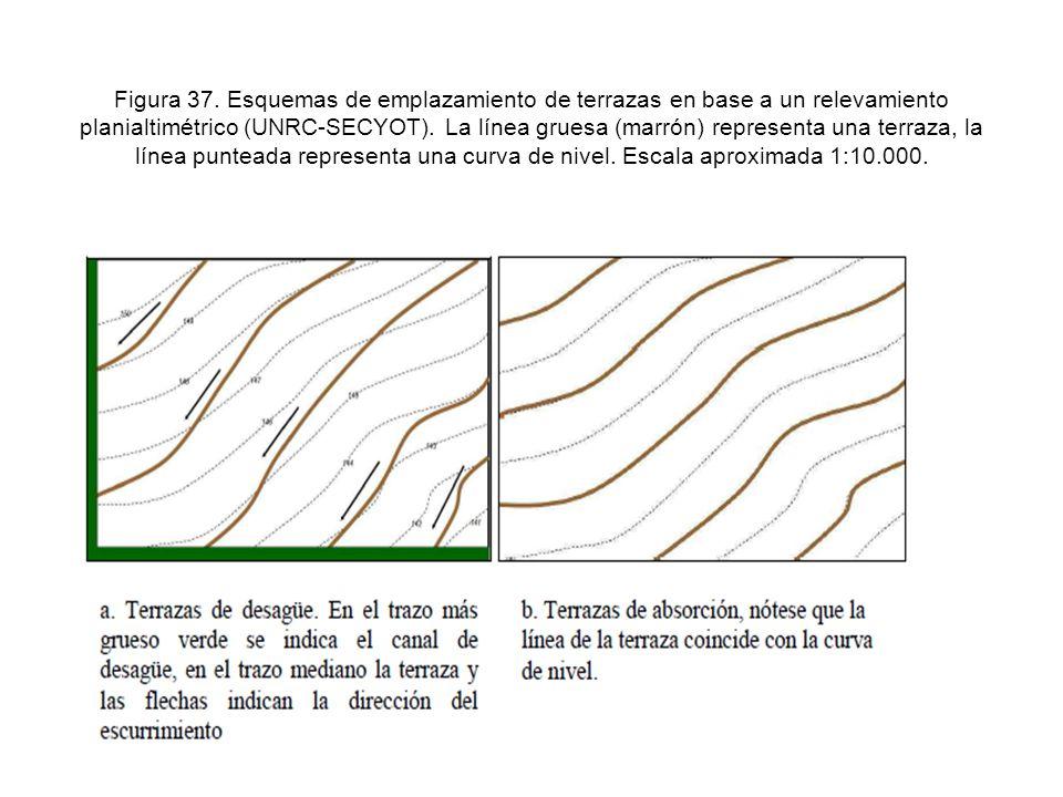 Figura 37.