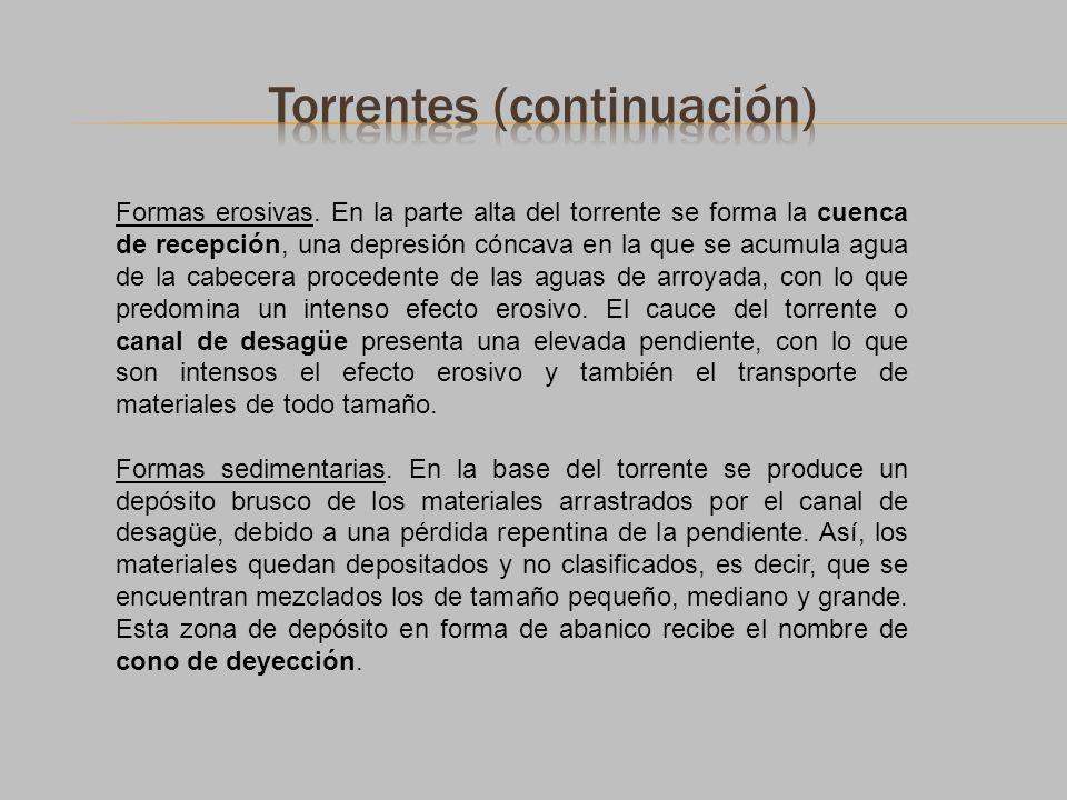 Torrentes (continuación)