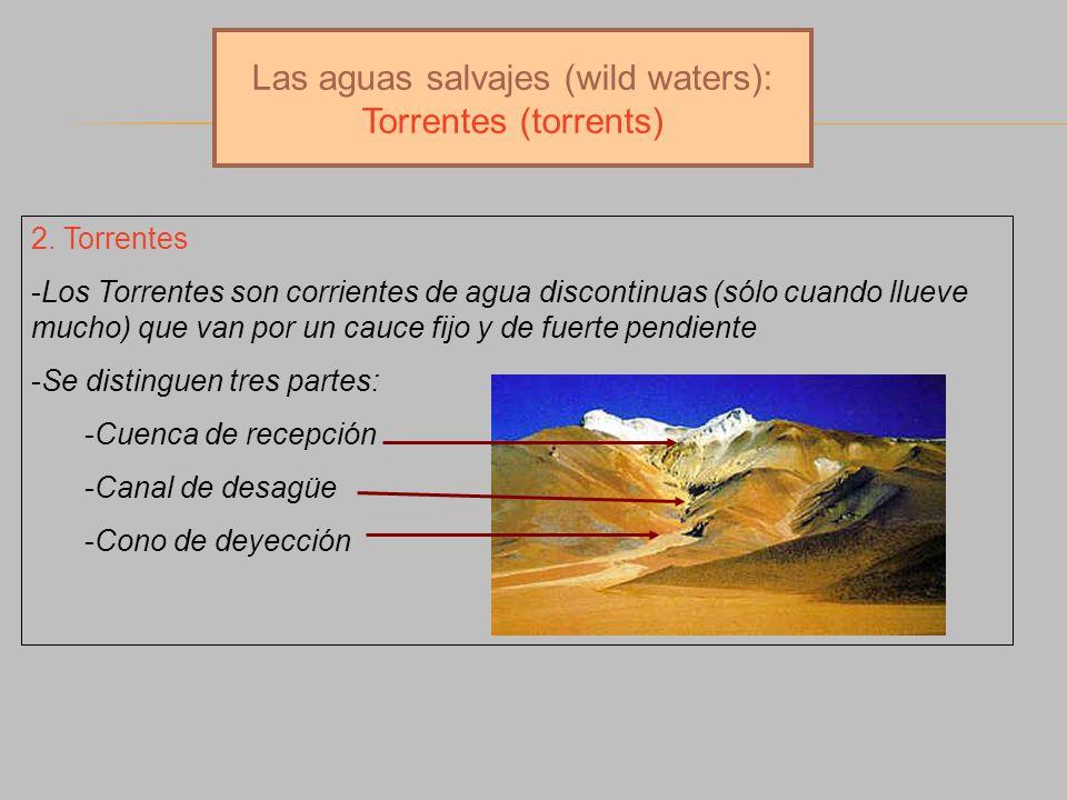 Las aguas salvajes (wild waters): Torrentes (torrents)