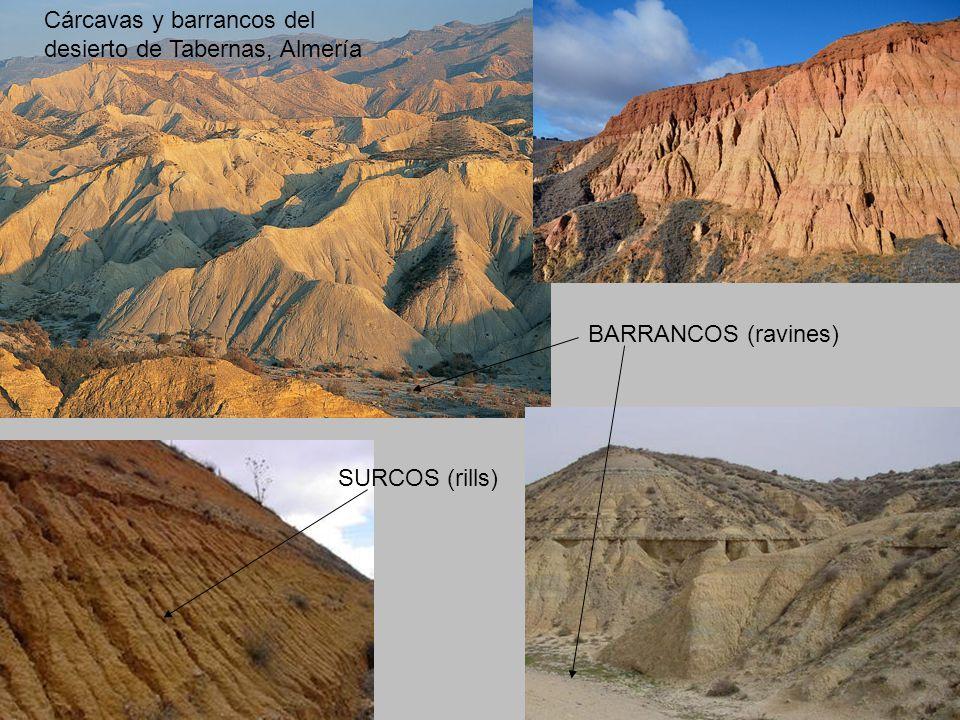Cárcavas y barrancos del desierto de Tabernas, Almería