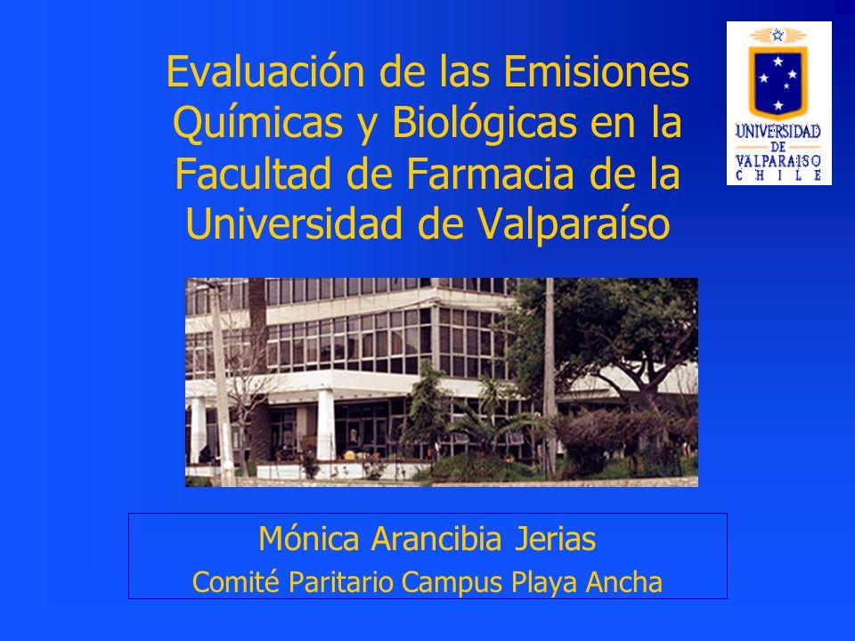 Mónica Arancibia Jerias Comité Paritario Campus Playa Ancha
