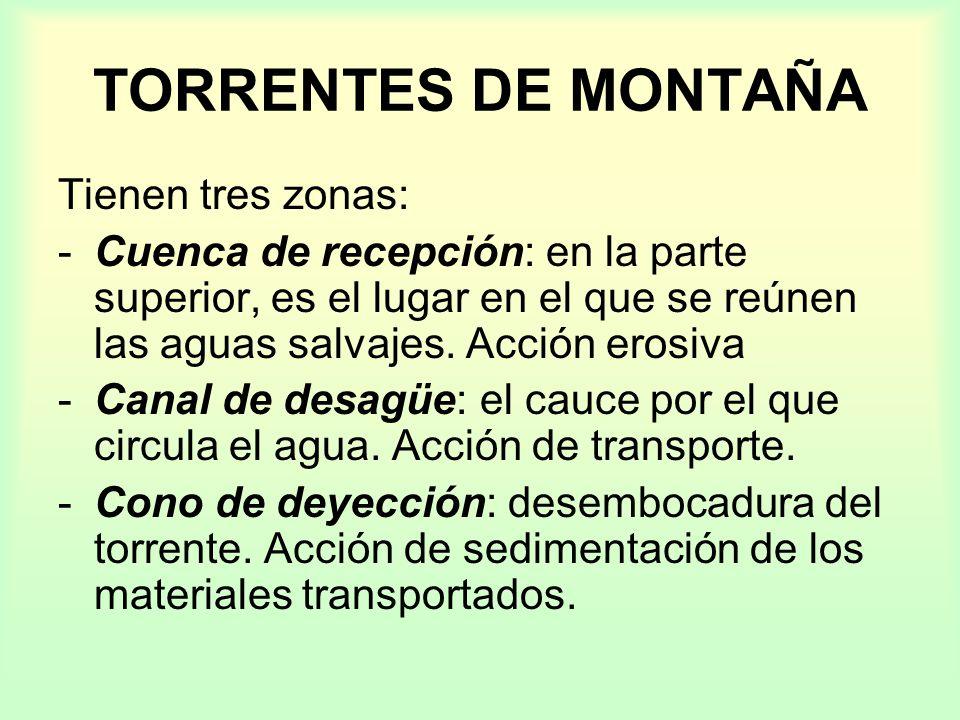 TORRENTES DE MONTAÑA Tienen tres zonas: