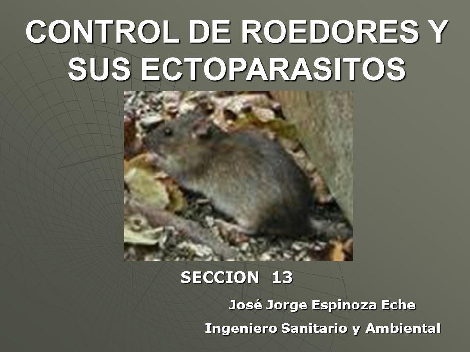 José Jorge Espinoza Eche Ingeniero Sanitario y Ambiental