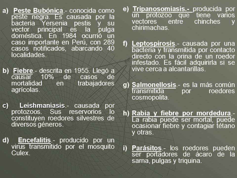 e) Tripanosomiasis.- producida por un protozoo que tiene varios vectores entre chinches y chirimachas.