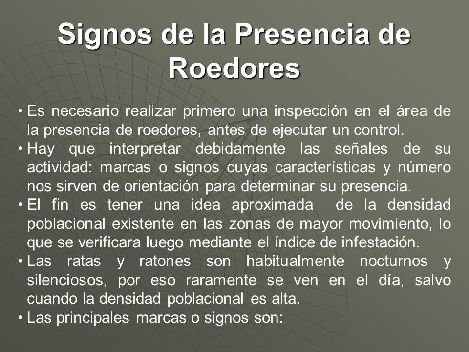 Signos de la Presencia de Roedores