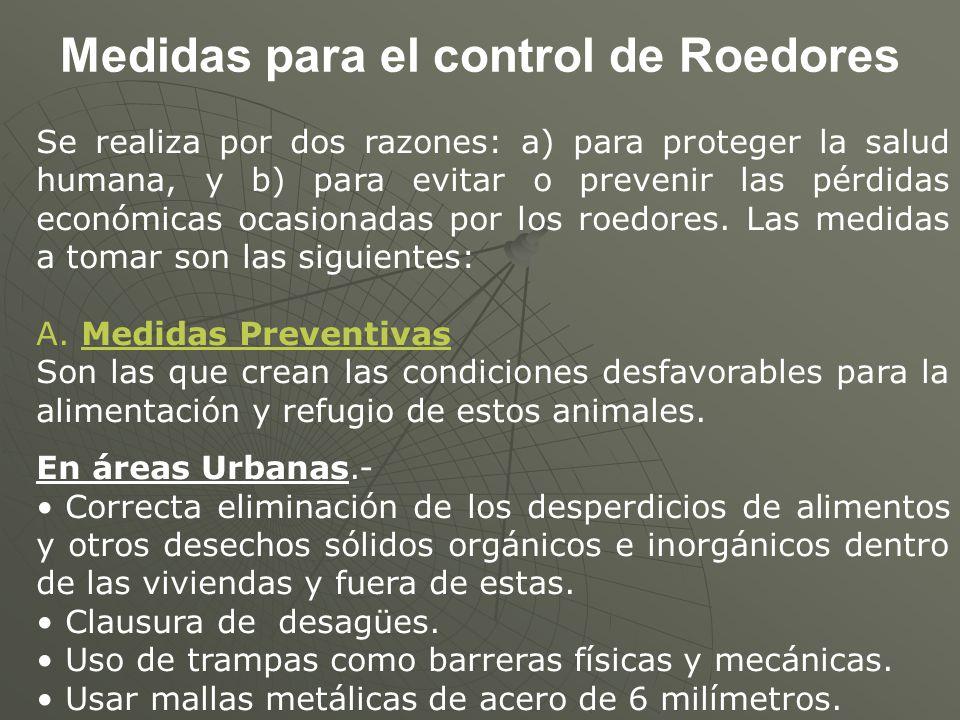 Medidas para el control de Roedores