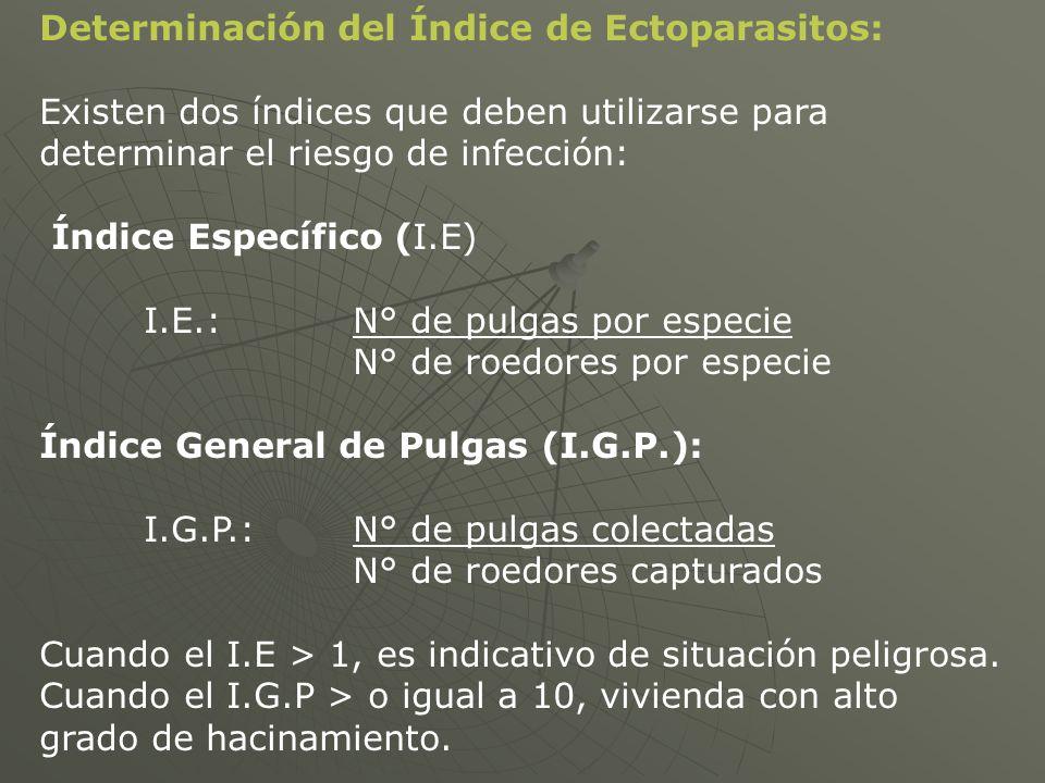 Determinación del Índice de Ectoparasitos: