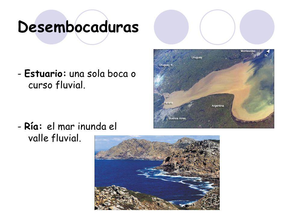 Desembocaduras - Estuario: una sola boca o curso fluvial.
