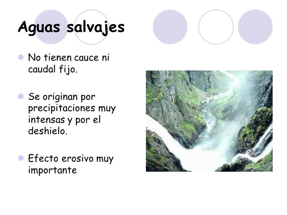 Aguas salvajes No tienen cauce ni caudal fijo.
