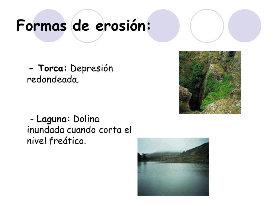 Formas de erosión: - Torca: Depresión redondeada.