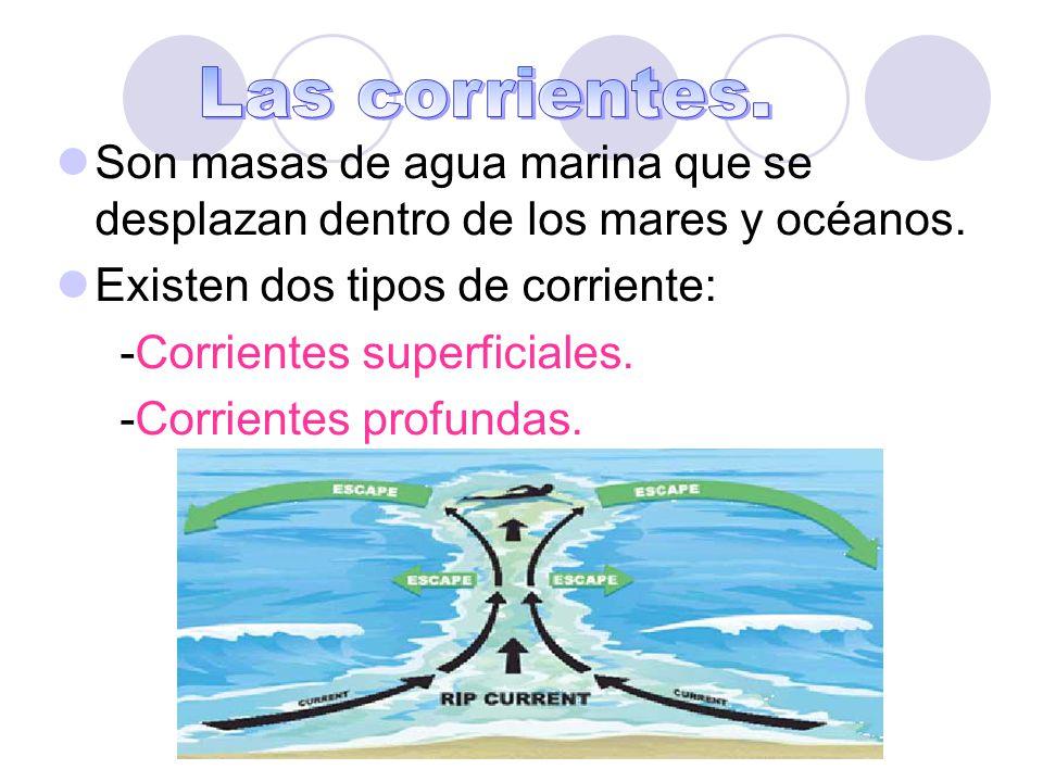 Las corrientes. Son masas de agua marina que se desplazan dentro de los mares y océanos. Existen dos tipos de corriente: