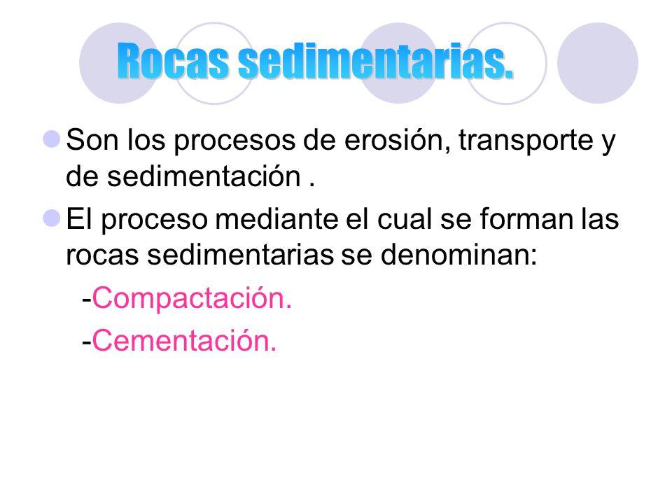 Rocas sedimentarias. Son los procesos de erosión, transporte y de sedimentación .