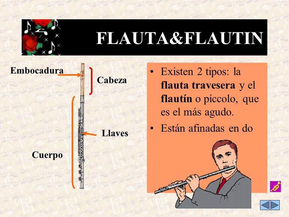 FLAUTA&FLAUTIN Embocadura. Existen 2 tipos: la flauta travesera y el flautín o píccolo, que es el más agudo.
