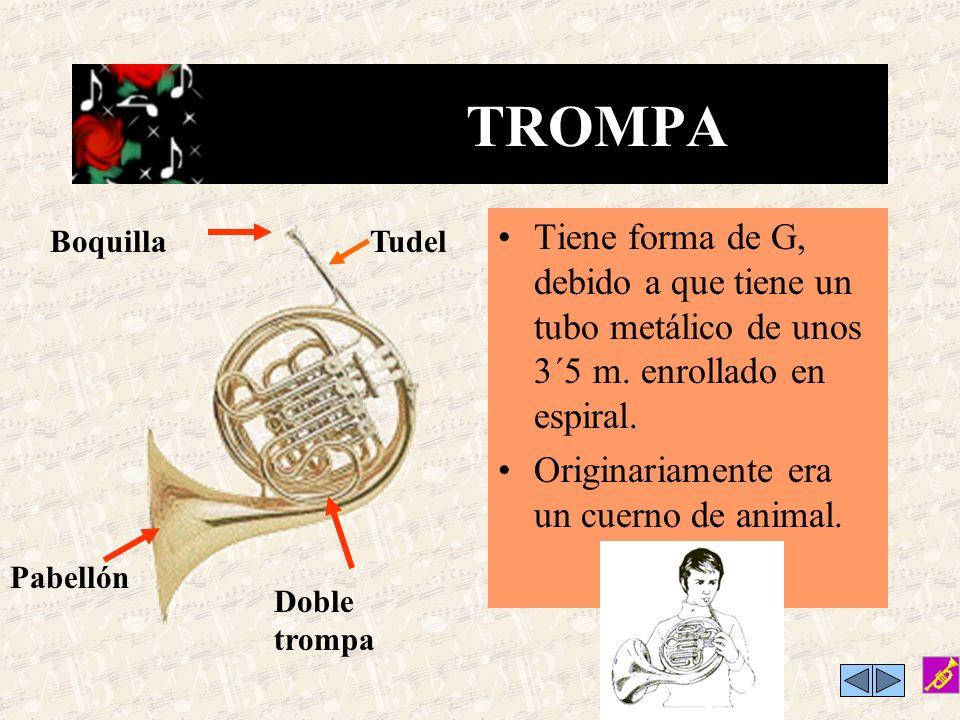 TROMPA Tiene forma de G, debido a que tiene un tubo metálico de unos 3´5 m. enrollado en espiral. Originariamente era un cuerno de animal.
