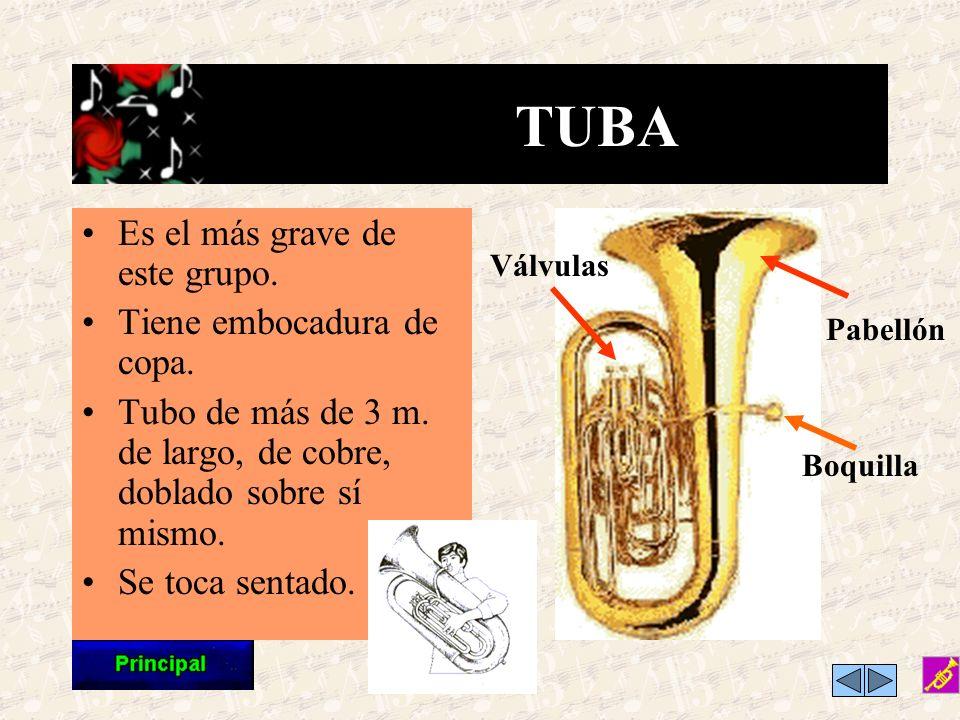 TUBA Es el más grave de este grupo. Tiene embocadura de copa.