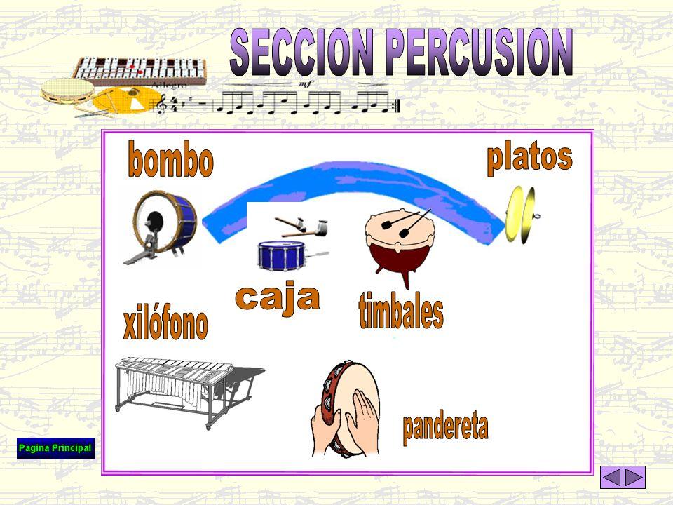 SECCION PERCUSION bombo platos caja timbales xilófono pandereta