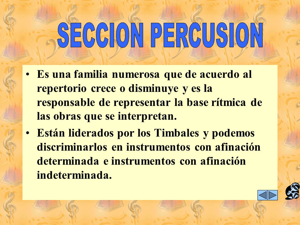 SECCION PERCUSION