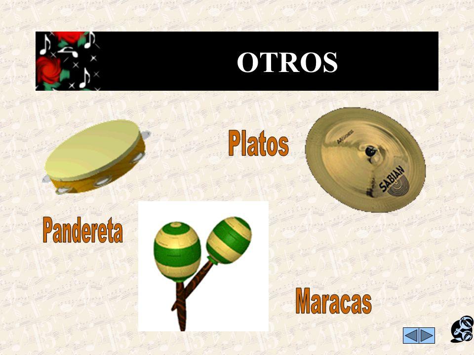 OTROS Platos Pandereta Maracas
