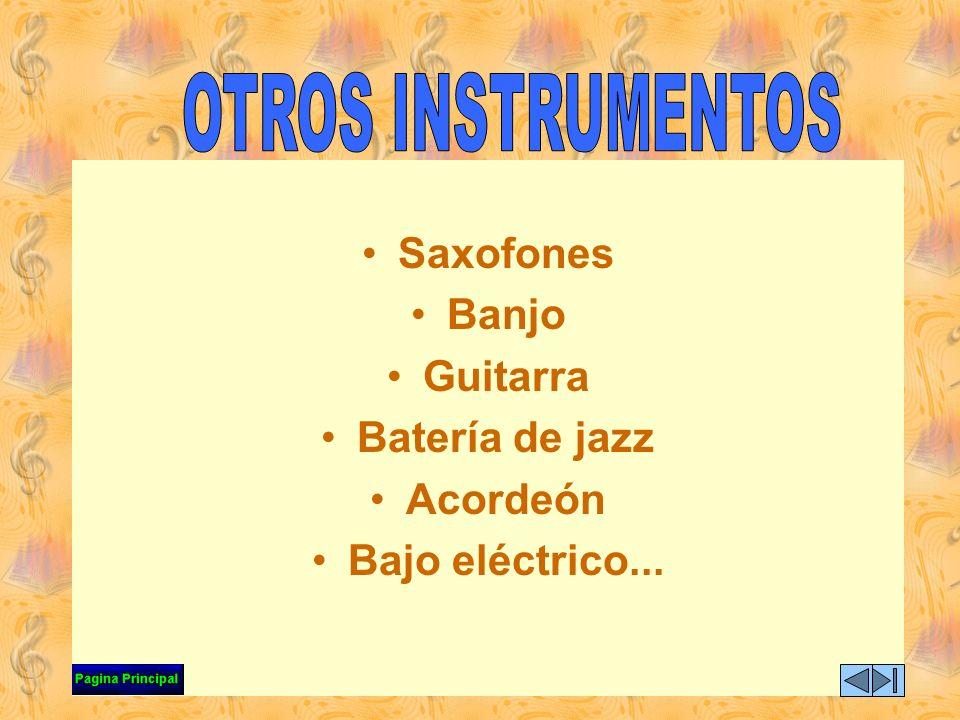 OTROS INSTRUMENTOS Saxofones Banjo Guitarra Batería de jazz Acordeón