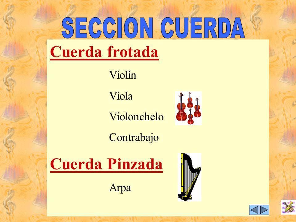 Cuerda frotada Cuerda Pinzada SECCION CUERDA Viola Violonchelo