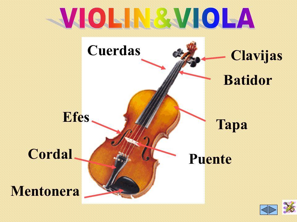 VIOLIN&VIOLA Cuerdas Clavijas Batidor Efes Tapa Cordal Puente Mentonera