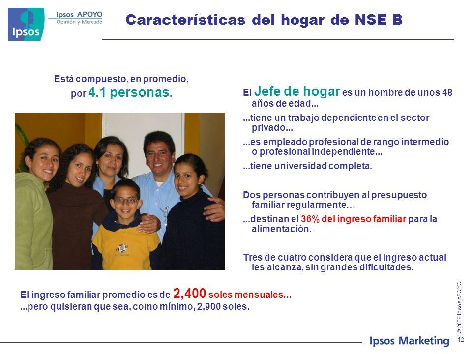 Características del hogar de NSE B