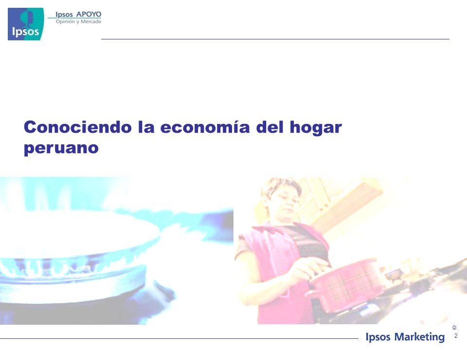 Conociendo la economía del hogar peruano