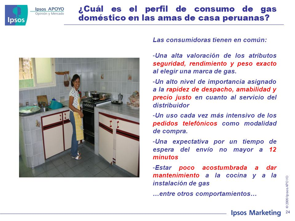 ¿Cuál es el perfil de consumo de gas doméstico en las amas de casa peruanas