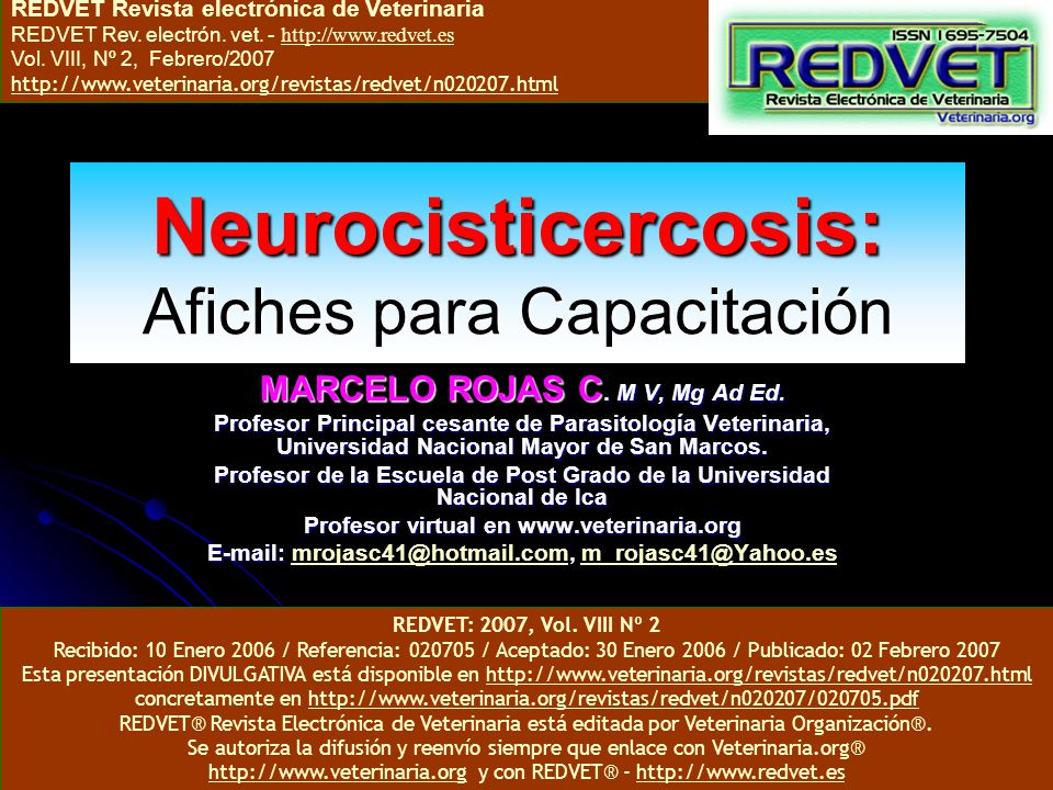 Neurocisticercosis: Afiches para Capacitación