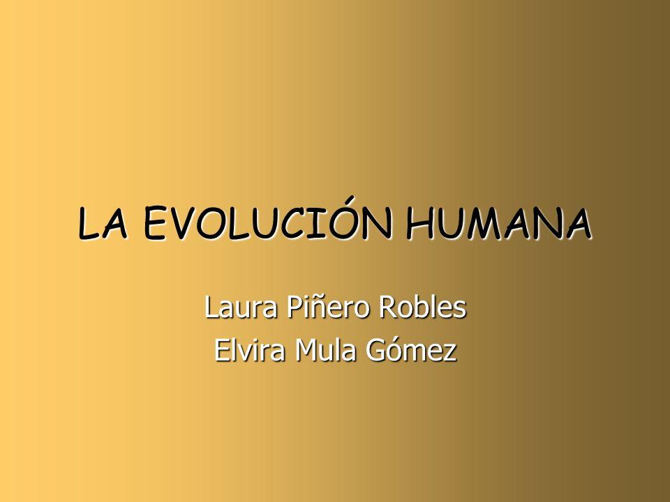 Laura Piñero Robles Elvira Mula Gómez